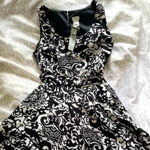 NWT New Cache Dress Black and White sz 6